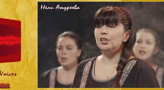 Нели Андреева